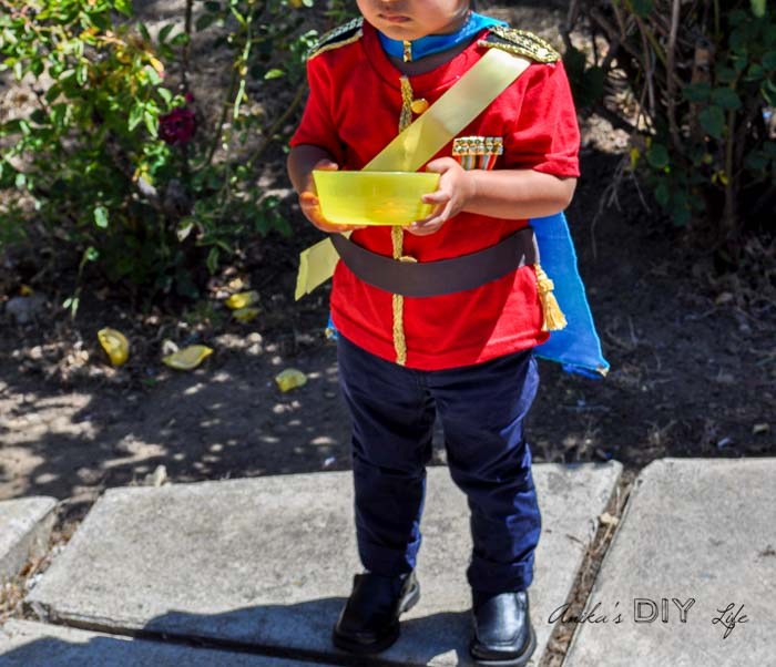 DIY Prince costume for royal birthday party