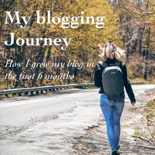 My 6 month Blogging Journey – How I Grew My Blog