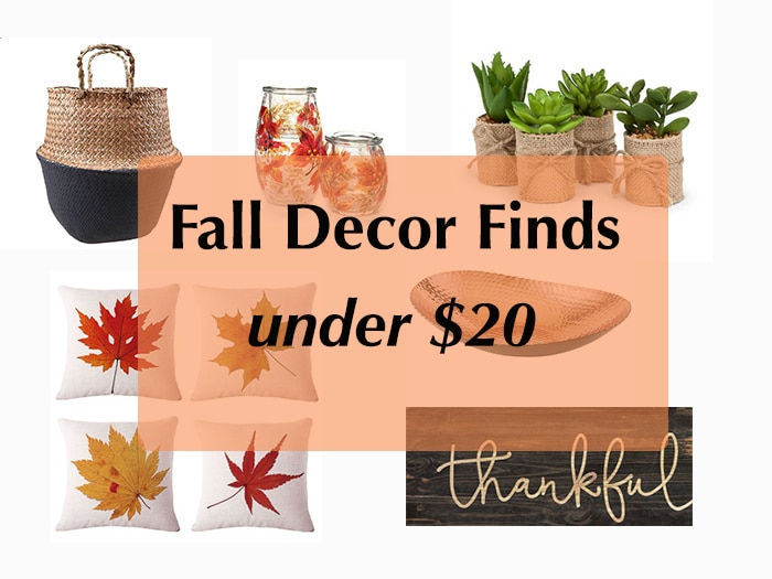 Affordable Fall Decor ideas - 20+ options - all under $20! These cheap fall decorations are gorgeous too! Get your home ready for fall!