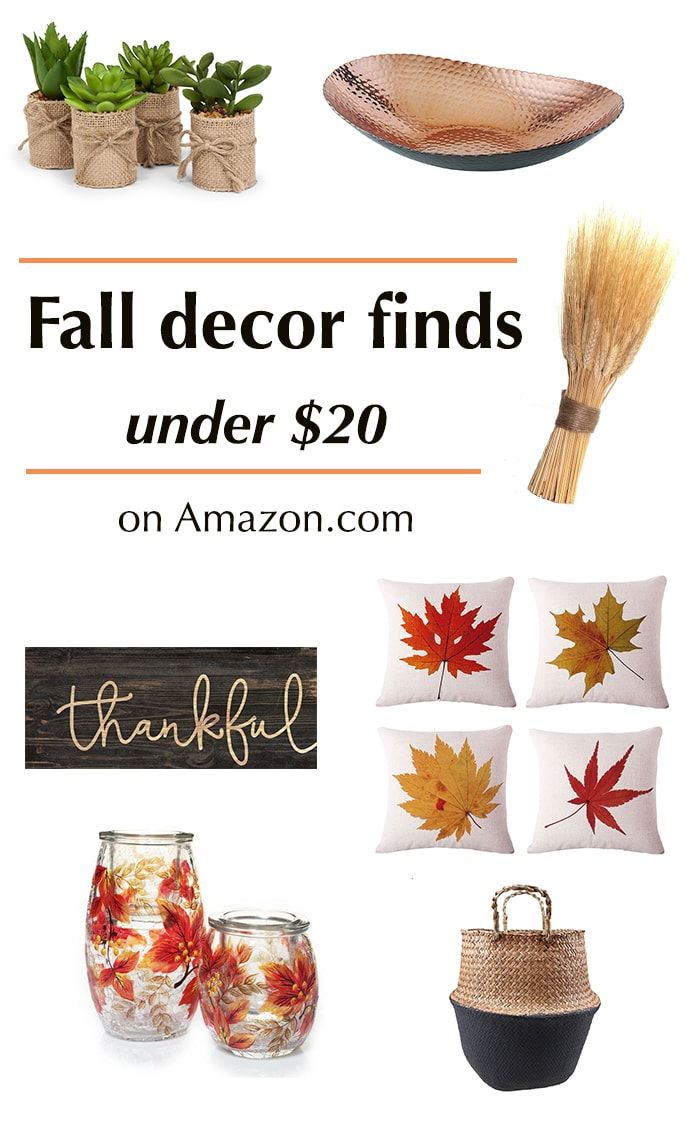 These are gorgeous Fall decor ideas.. Can't believe they are all under $20!
