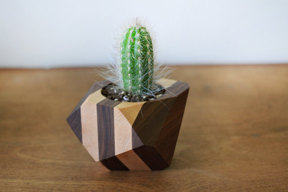 Unique hostess gift ideas made from wood anikas diy life who doesnt love a pretty succulent planter unique hostess gift ideas negle Choice Image