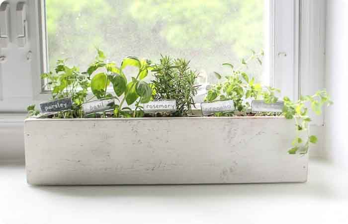 Kitchen Herb Garden Find Lots Of Inspiration To Build A DIY Planter Here · U201c