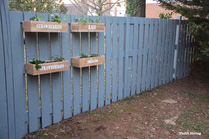 DIY hanging planter boxes on the fence