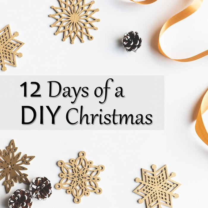 12 DIY Christmas decor and gift ideas!!