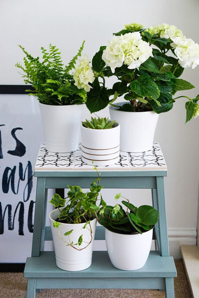 Ikea Bekvam stool hack for plant stand