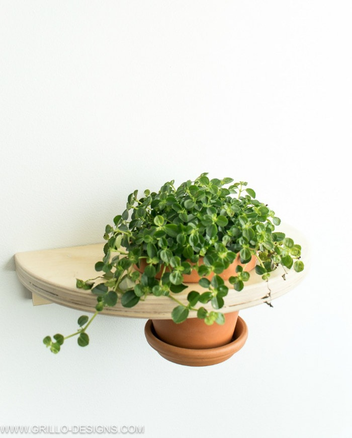 Ikea Frosta stool hack turned into a wall planter