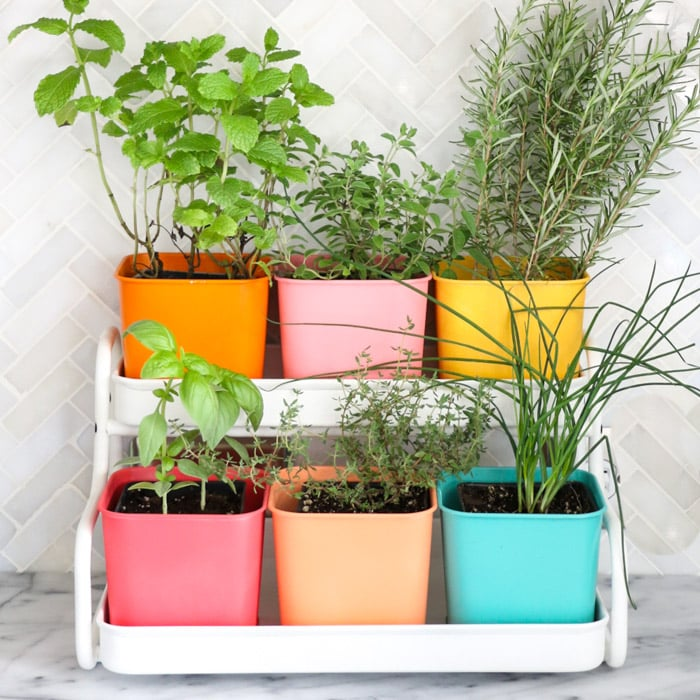 Colorful planters using Ikea pots