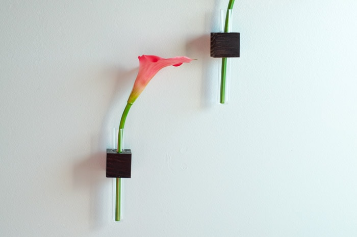 DIY test tube vases mounted on scrap wood blocks on wall