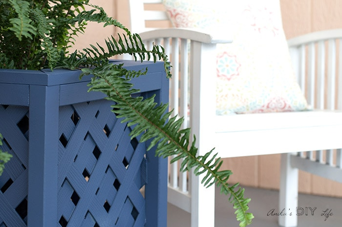 Close up the DIY lattice planter box