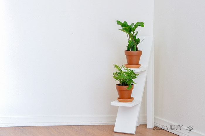 DIY tiered plant stand with 2 small plants
