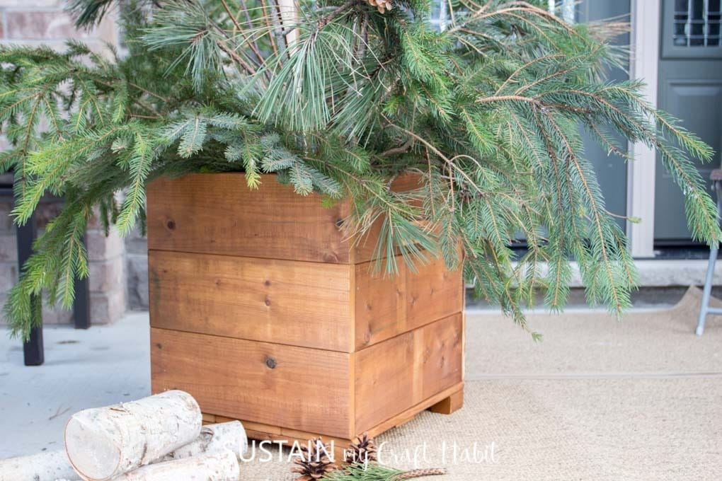 wood planter box with evergreen limbs