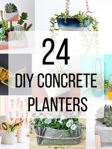 Collage of DIY concrete planters with text overlay