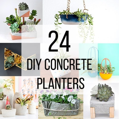 24 Easy DIY Concrete Planter Ideas