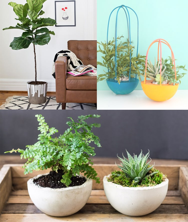 Collage of three round concrete planters