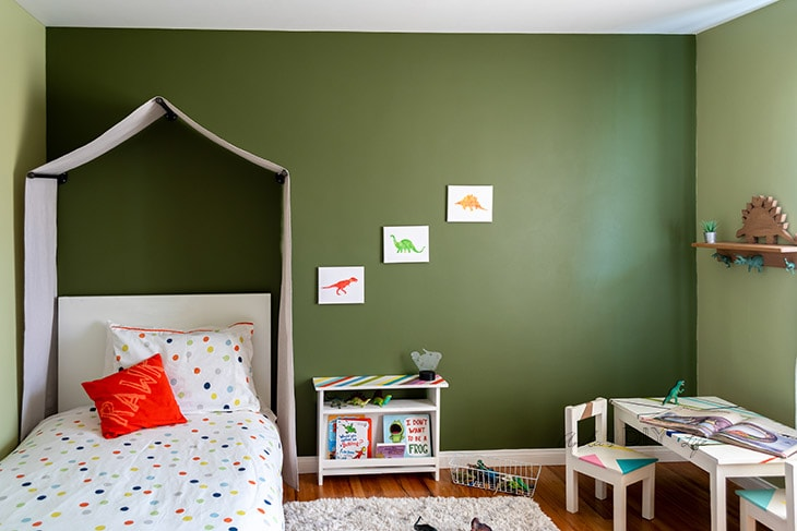 Full dinosaur themed room with tent canopy and other decor