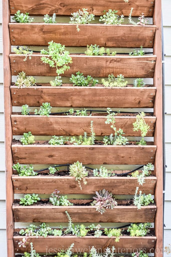 Vertical wood garden for small spaces