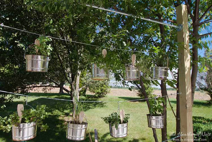 Aluminum buckets hanging with herbs
