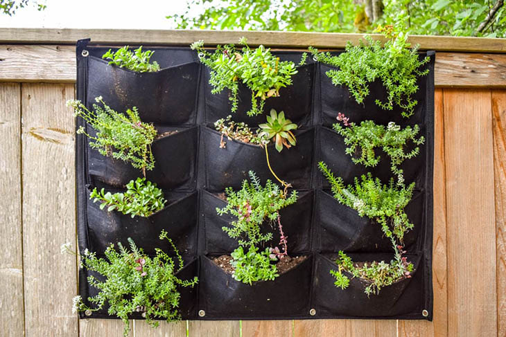 vertical succulent garden made with a pocket planter