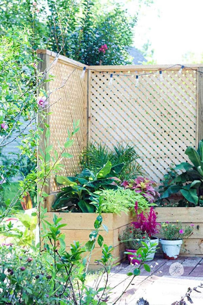 raised garden with lattice privacy screen