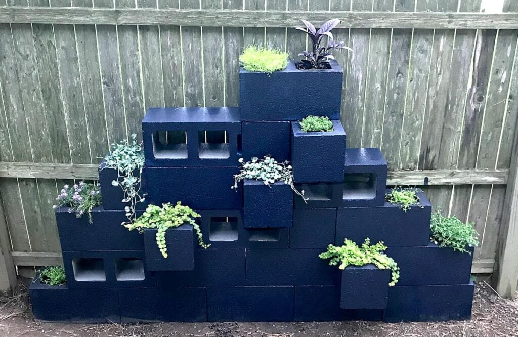 Blue painted cinder blocks stacked with succulents
