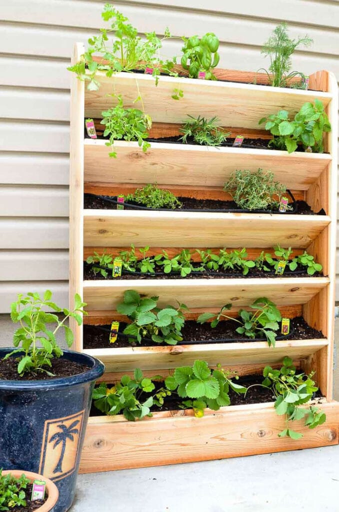 six shelf vertical garden made from wood