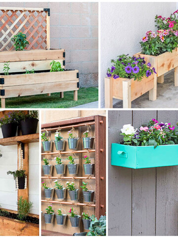 Easy beginner friendly DIY gardening ideas for small spaces.