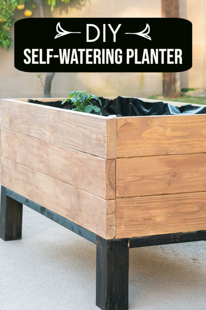 Self-watering-raised garden bed in backyard with text overlay