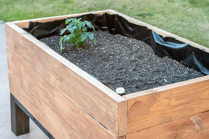 Close up of the self watering raised garden bed