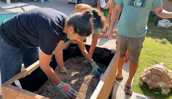 Adding vermiculite and peat moss to the planter