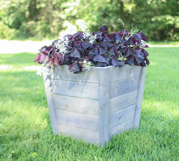 DIY wood planter box with plants