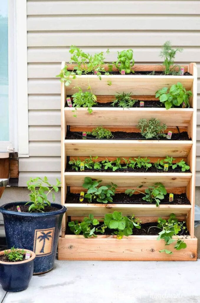 vertical six row planter with herbs planted in it