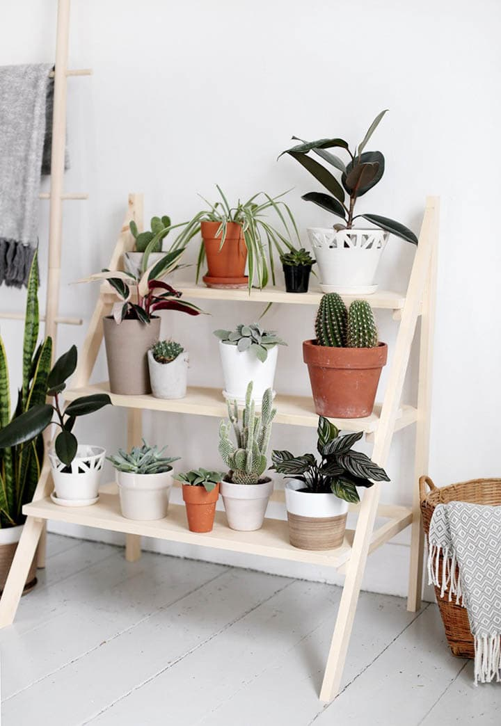 wooden ladder plant stand with plants