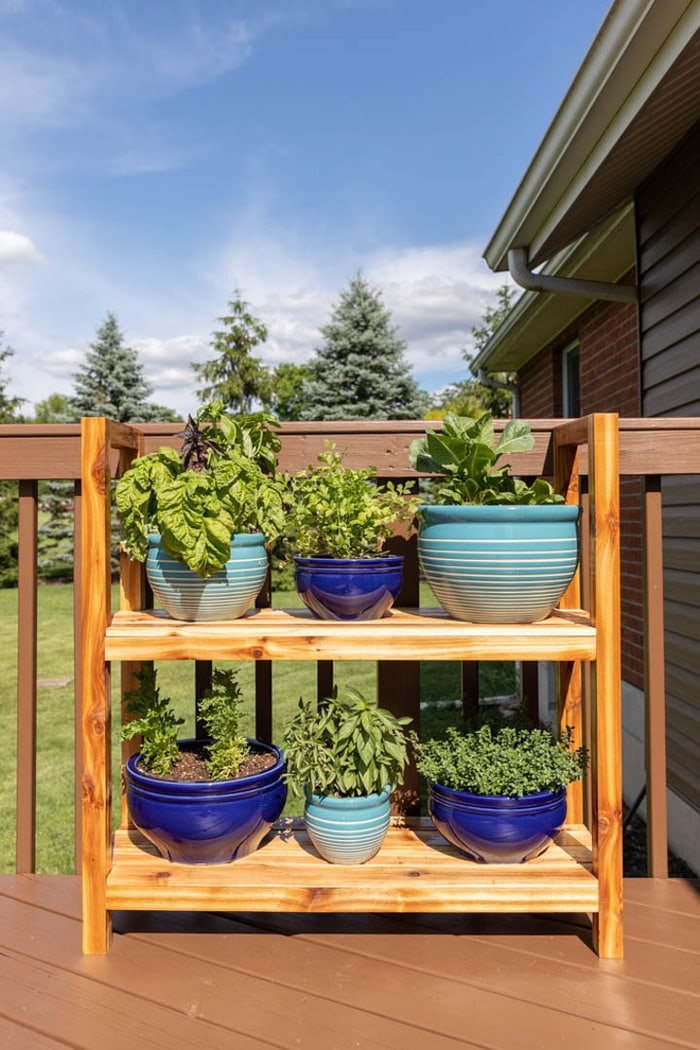 Cedar DIY plant stand with two shelves sitting on a deck