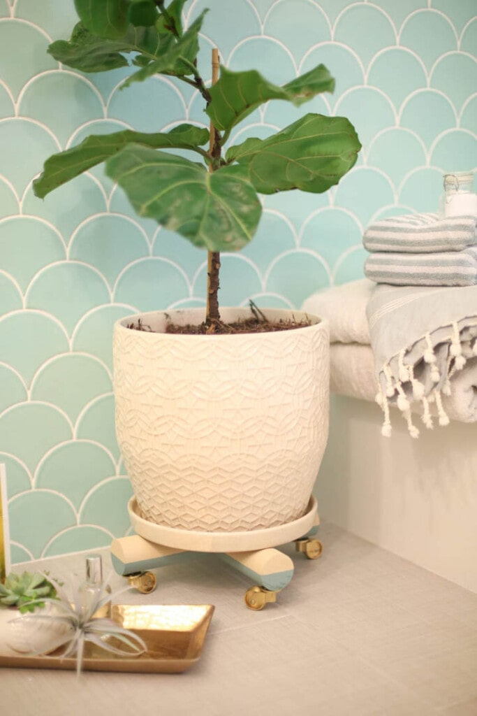 Plant sitting on plant stand with wheels in a bathroom