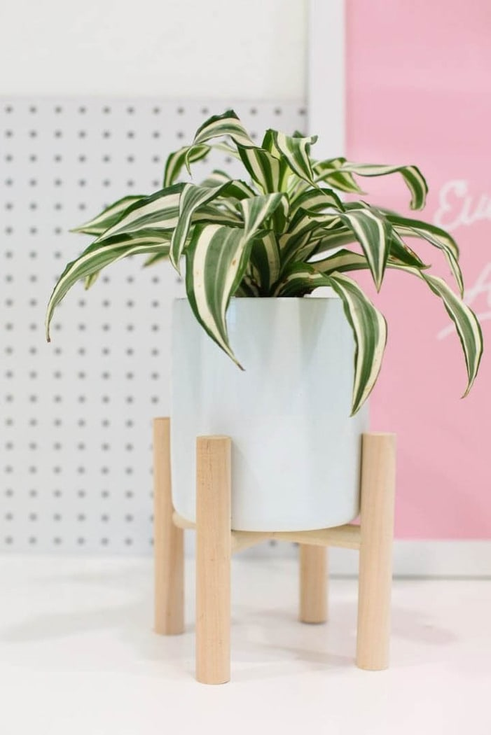 tabletop DIY plant stand with plant sitting on a desk