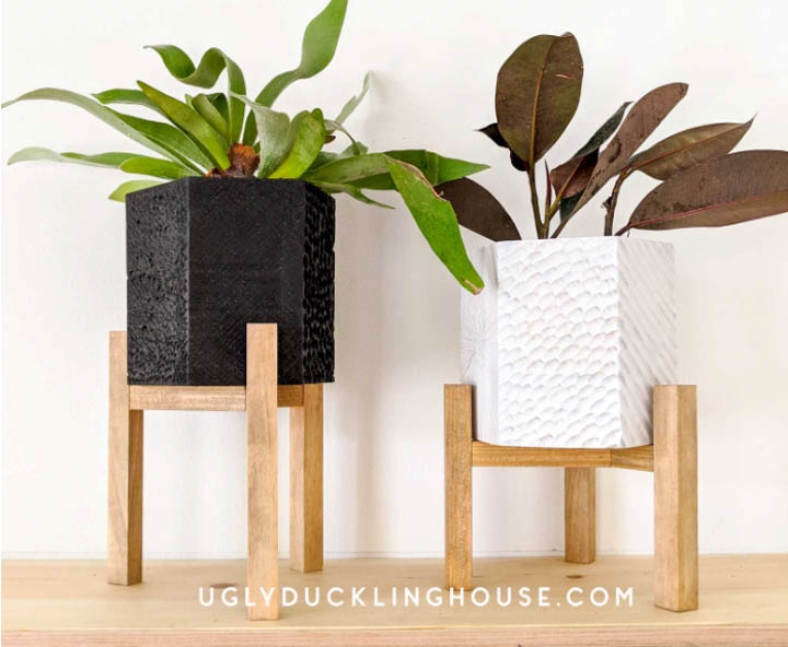 two plants in post sitting on diy plant stands