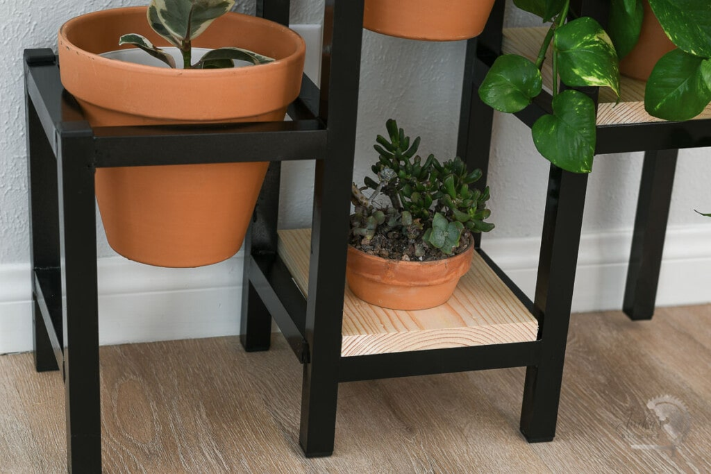 close up of the bottom level of the plant stand with wood slab and small plant