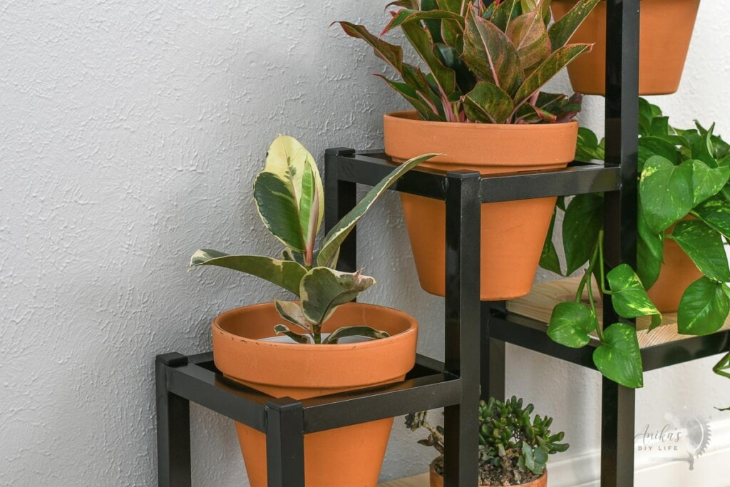 close up of pots in DIY metal plant stands