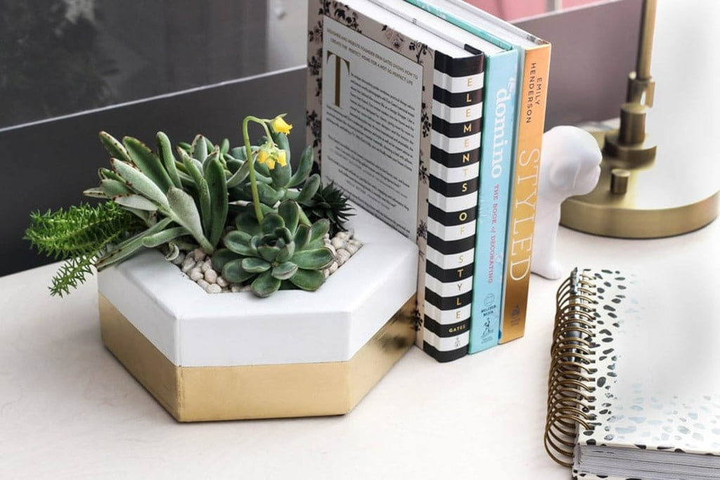 white and gold hexagon planter with succulents sitting on a desk