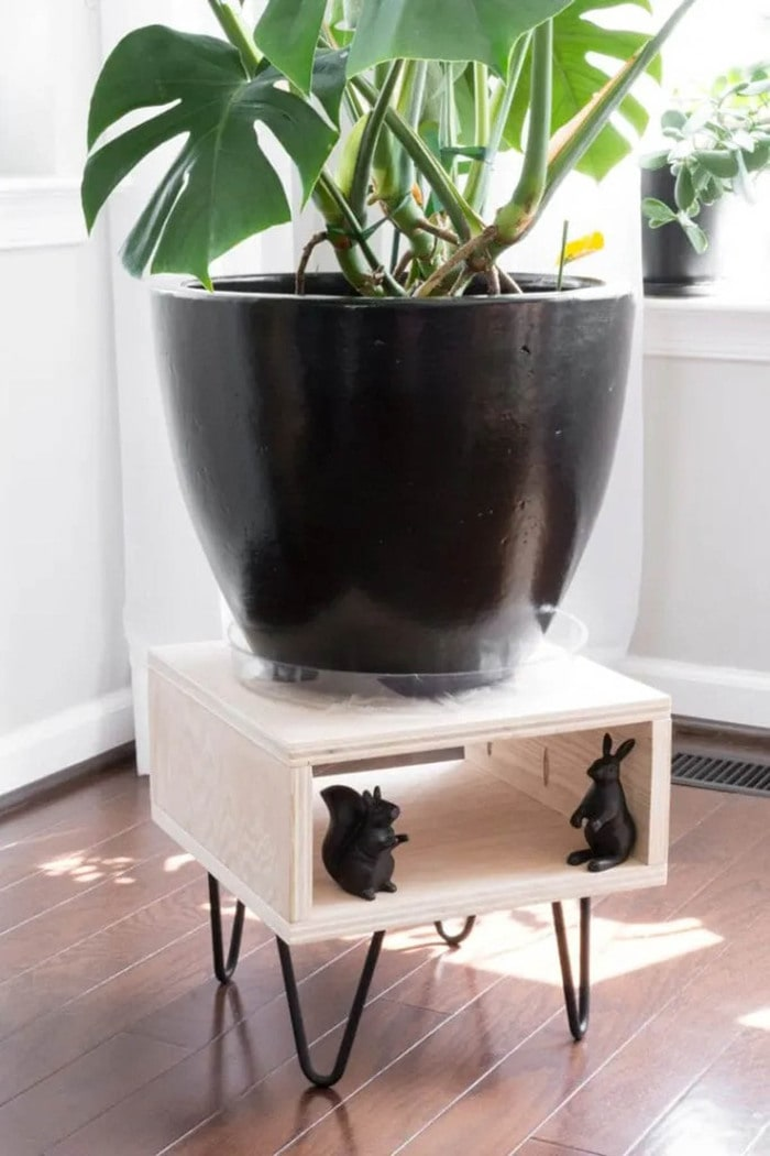 modern plant stand made from plywood with hairpin legs