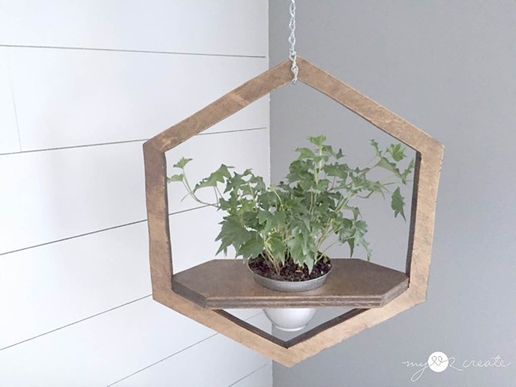 hexagon hanging planter with plant