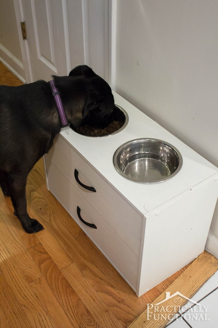 White raised dog bowl stand with drawers